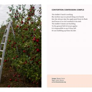 Contortion: Confession: Compile poem and photo