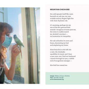 Mountain Chickadee poem and photo
